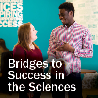 bridges to success scholarship essay 2018-2019 regents' and presidential scholarship application by completing the scholarship you will be able to enter or copy & paste your short essay responses.